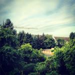 Instagram_3_Lichtzirkus_Photographie