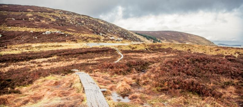 Irland – Mein Reisebericht TEIL 1